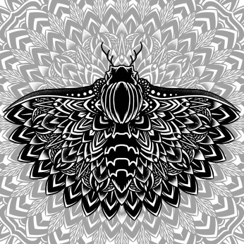 Moth Mandala