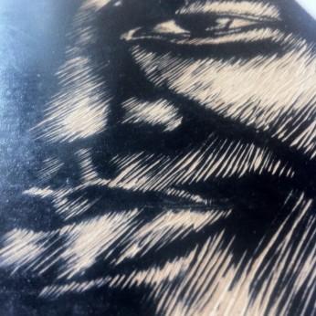 Shadow Woodcut